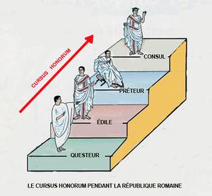 Curriculum, curriculum, curriculum